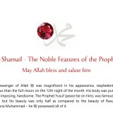 Al-Shamail - The Noble Features of the Prophet ﷺ